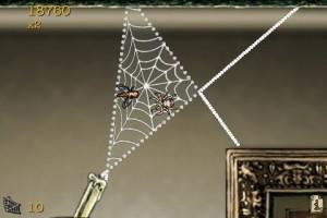 spider17 300x200 spider17
