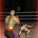 ironfist boxing3 13 125x125 App Review: Iron Fist Boxing 3rd Strike by Realtech VR