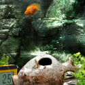 iquarium5 125x125 App Review: iQuarium for iPhone by Infinite Dreams Inc.