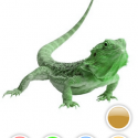 13874 Screenshot2 125x125 Colorfull Chameleon by Kabir Khanna