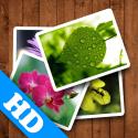 16507 mzm.huwrorqq 125x125 Spring Wallpaper HD by fengmin