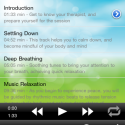 17397 Screenshot 2011.06.13 13.32.27 125x125 MindBody Medicine by Infenion Tech Pte Ltd