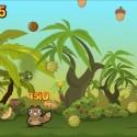 18373 mzl.pbvanpxc.320x480 75 125x125 Noogra Nuts by Oren Bengigi